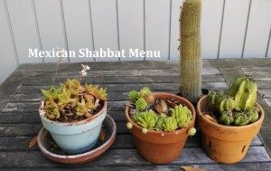 Mexican Shabbat Menu photo